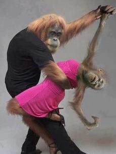 Image Ballroom Dance Humor